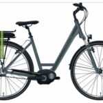 E-Bike Hercules Rochefort R7 Wave 28er Damen 7 Gang Nexus grau